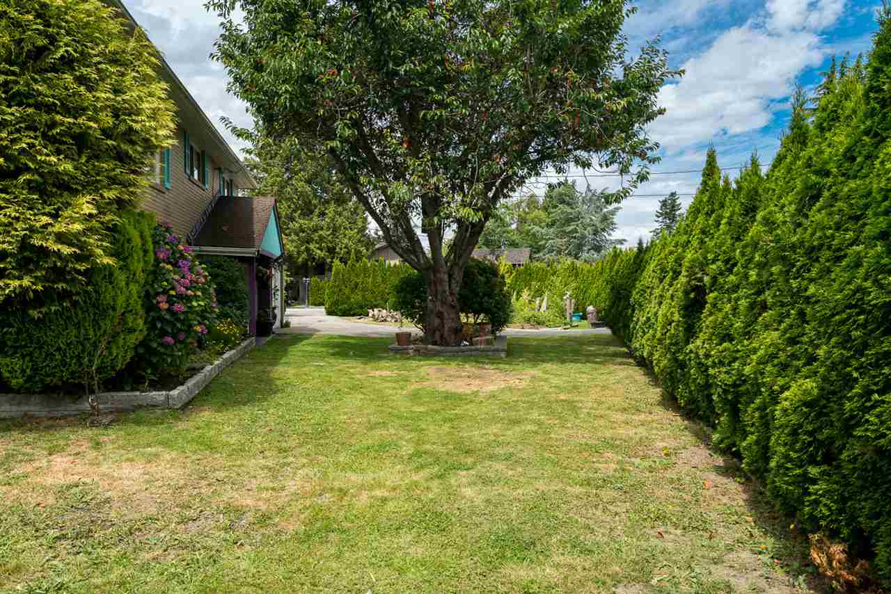 Detached at 973 53A STREET, Tsawwassen, British Columbia. Image 5