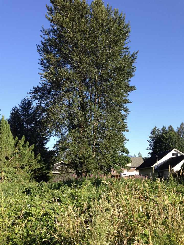 Vacant Land at 410 BEAR AVENUE, Harrison Hot Springs, British Columbia. Image 3