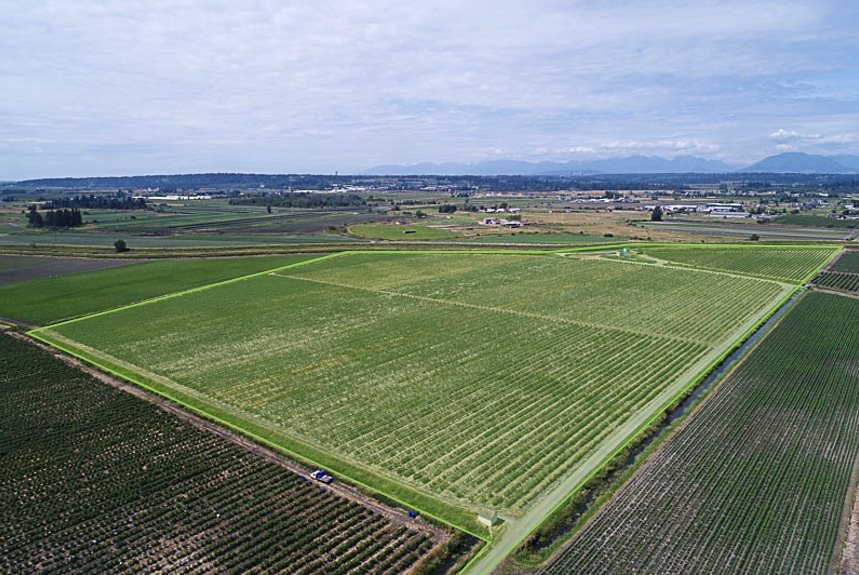 Vacant Land at 16397 40 AVENUE, Cloverdale, British Columbia. Image 6