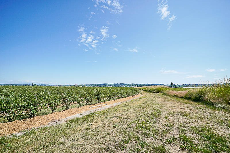 Vacant Land at 16397 40 AVENUE, Cloverdale, British Columbia. Image 16