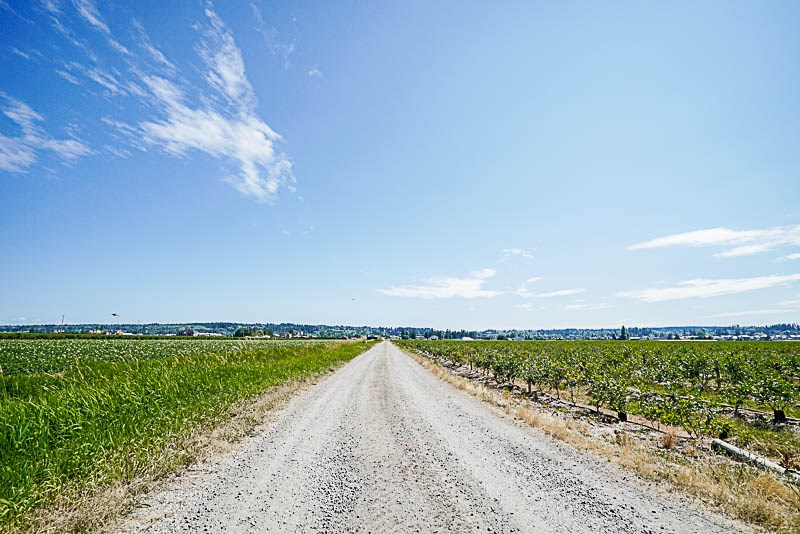 Vacant Land at 16397 40 AVENUE, Cloverdale, British Columbia. Image 17