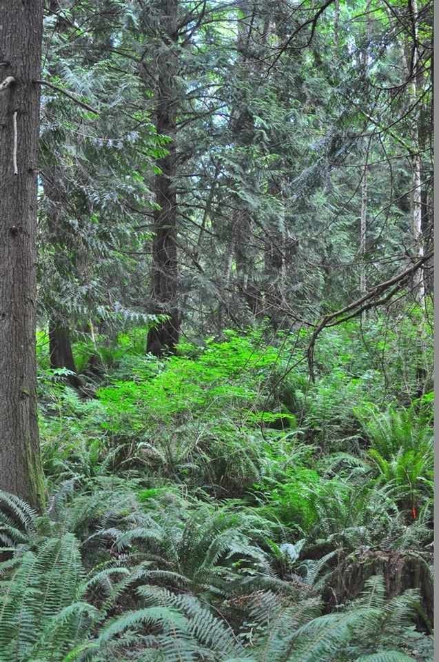Detached at 1289 LOCKYER ROAD, Sunshine Coast, British Columbia. Image 16