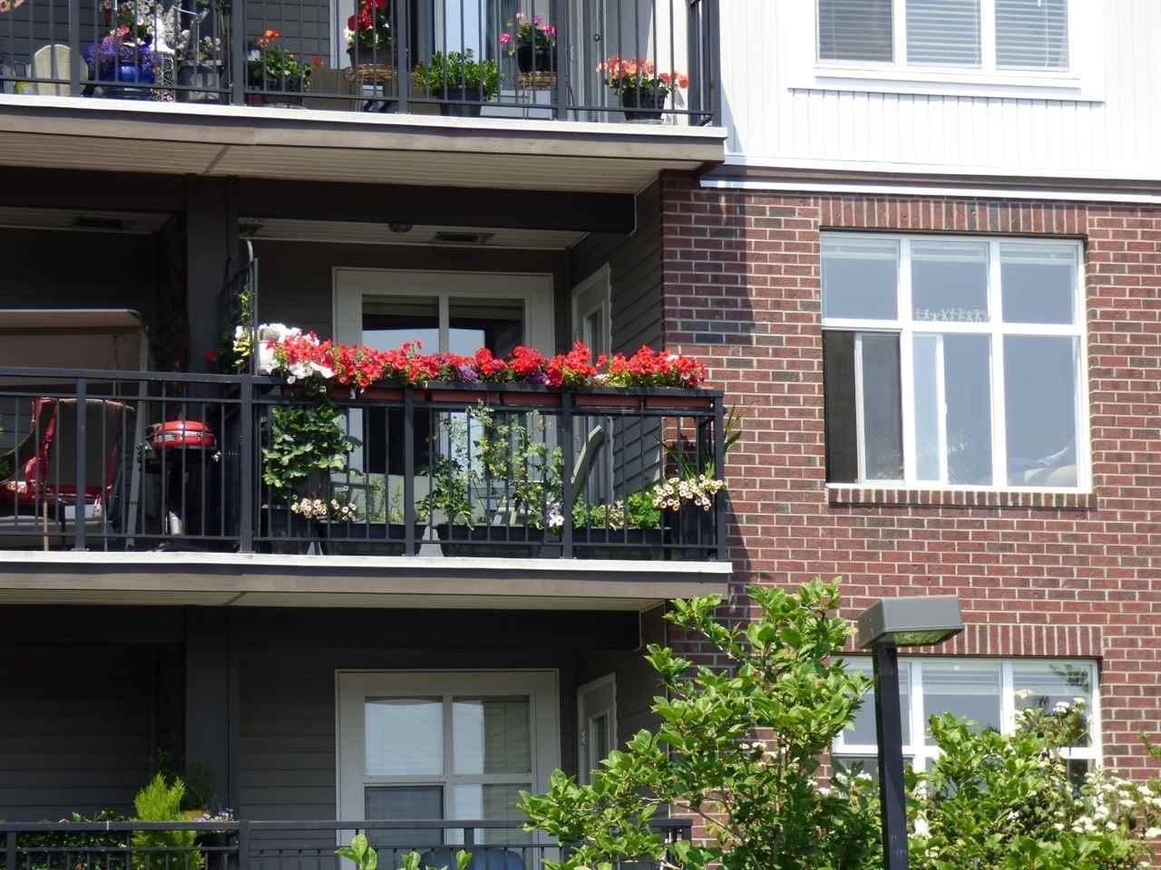Condo Apartment at 202 45645 KNIGHT ROAD, Unit 202, Sardis, British Columbia. Image 3