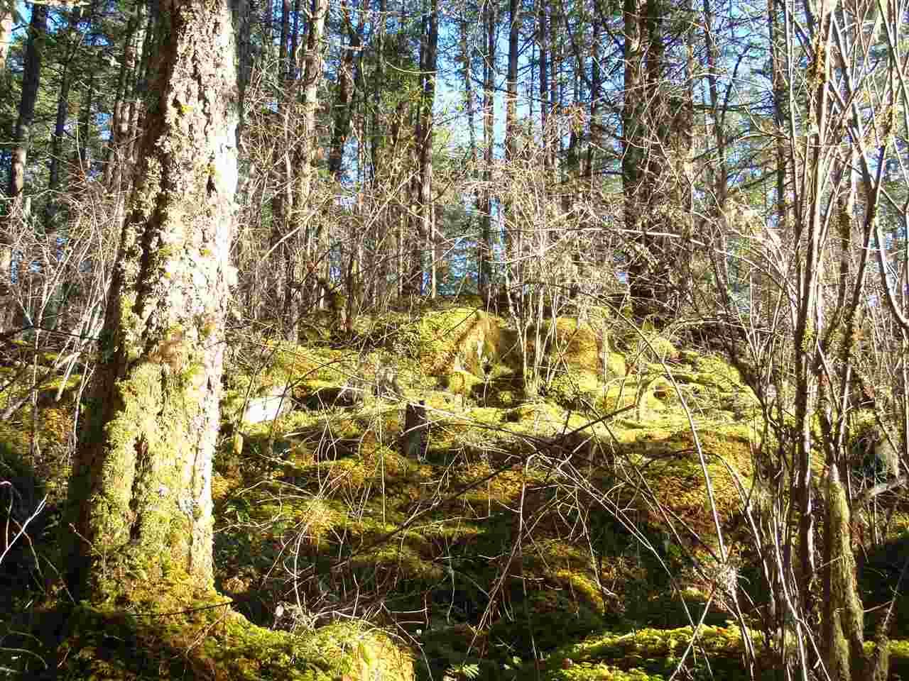 Vacant Land at Lot A SUNSHINE COAST HIGHWAY, Unit Lot A, Sunshine Coast, British Columbia. Image 14