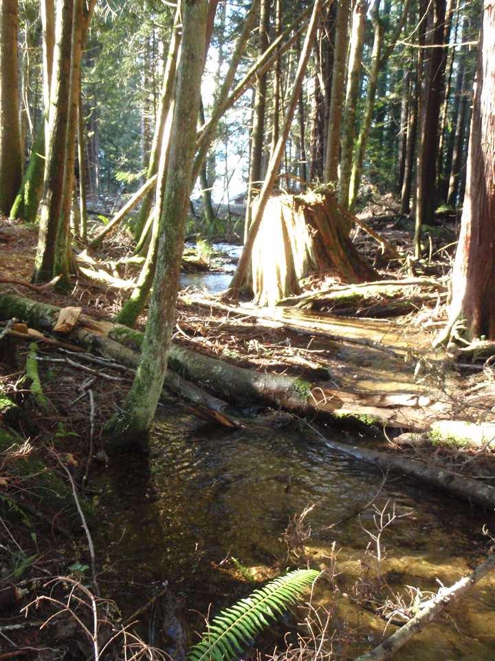 Vacant Land at Lot A SUNSHINE COAST HIGHWAY, Unit Lot A, Sunshine Coast, British Columbia. Image 15
