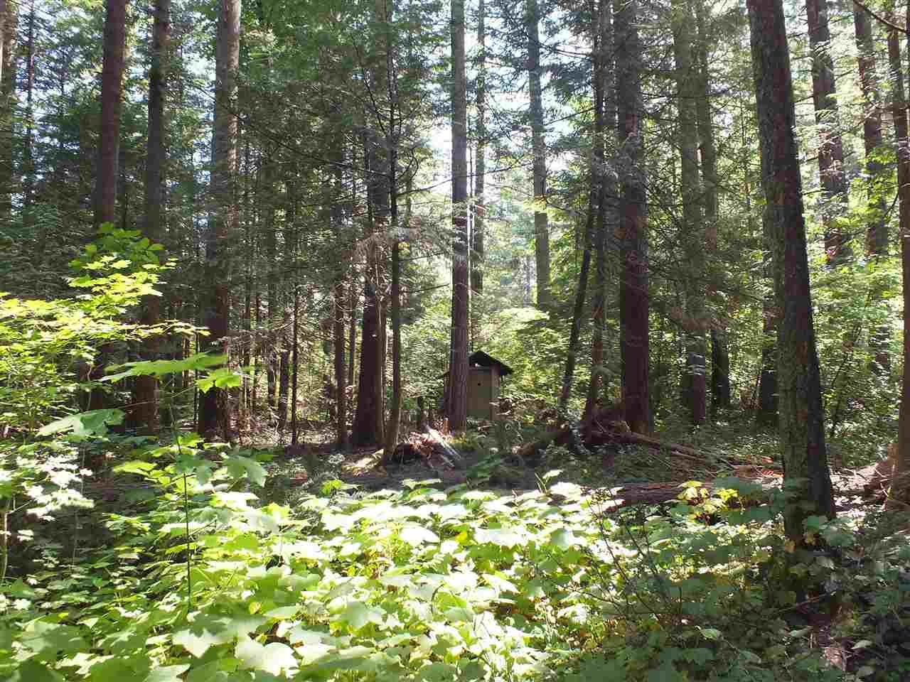 Vacant Land at 21259 LANDSTROM ROAD, Hope, British Columbia. Image 5