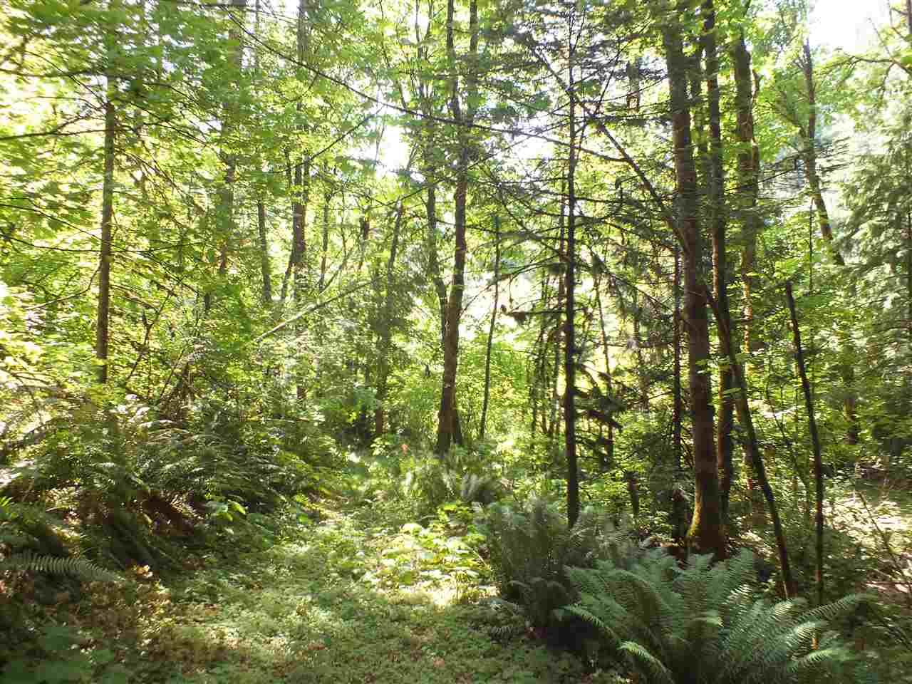 Vacant Land at 21259 LANDSTROM ROAD, Hope, British Columbia. Image 6