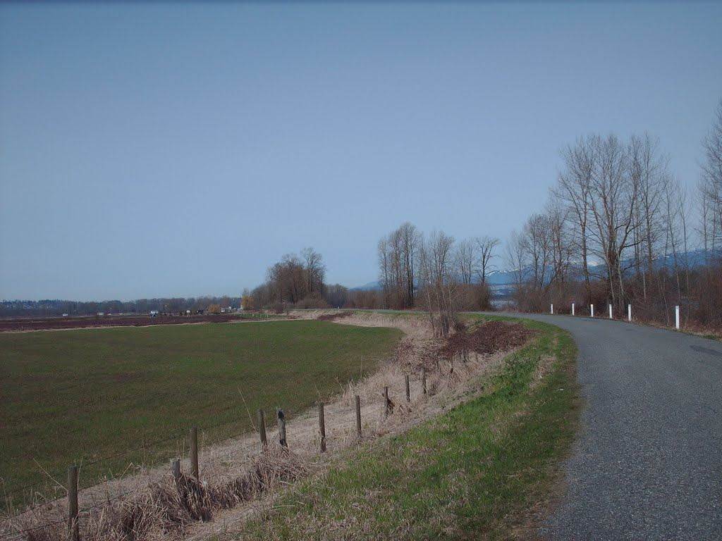 Vacant Land at LT.8 DYKE ROAD, Unit LT.8, North Surrey, British Columbia. Image 6
