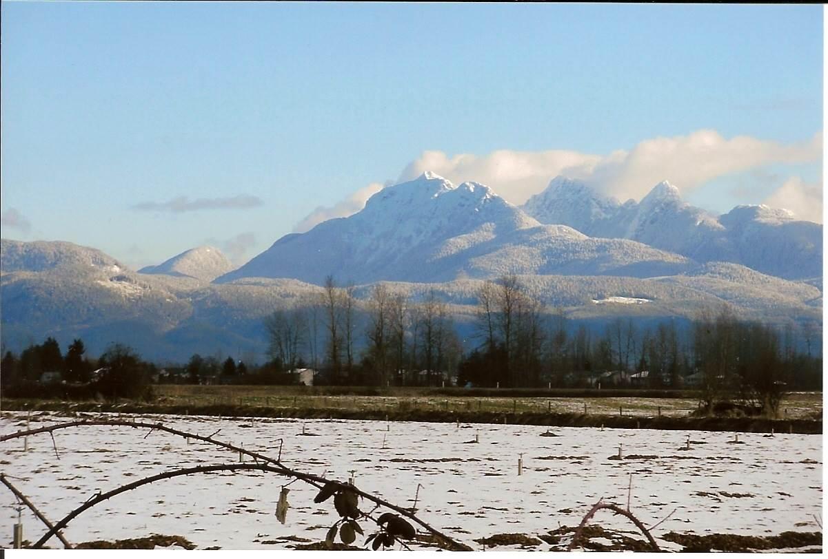 Vacant Land at LT.8 DYKE ROAD, Unit LT.8, North Surrey, British Columbia. Image 12