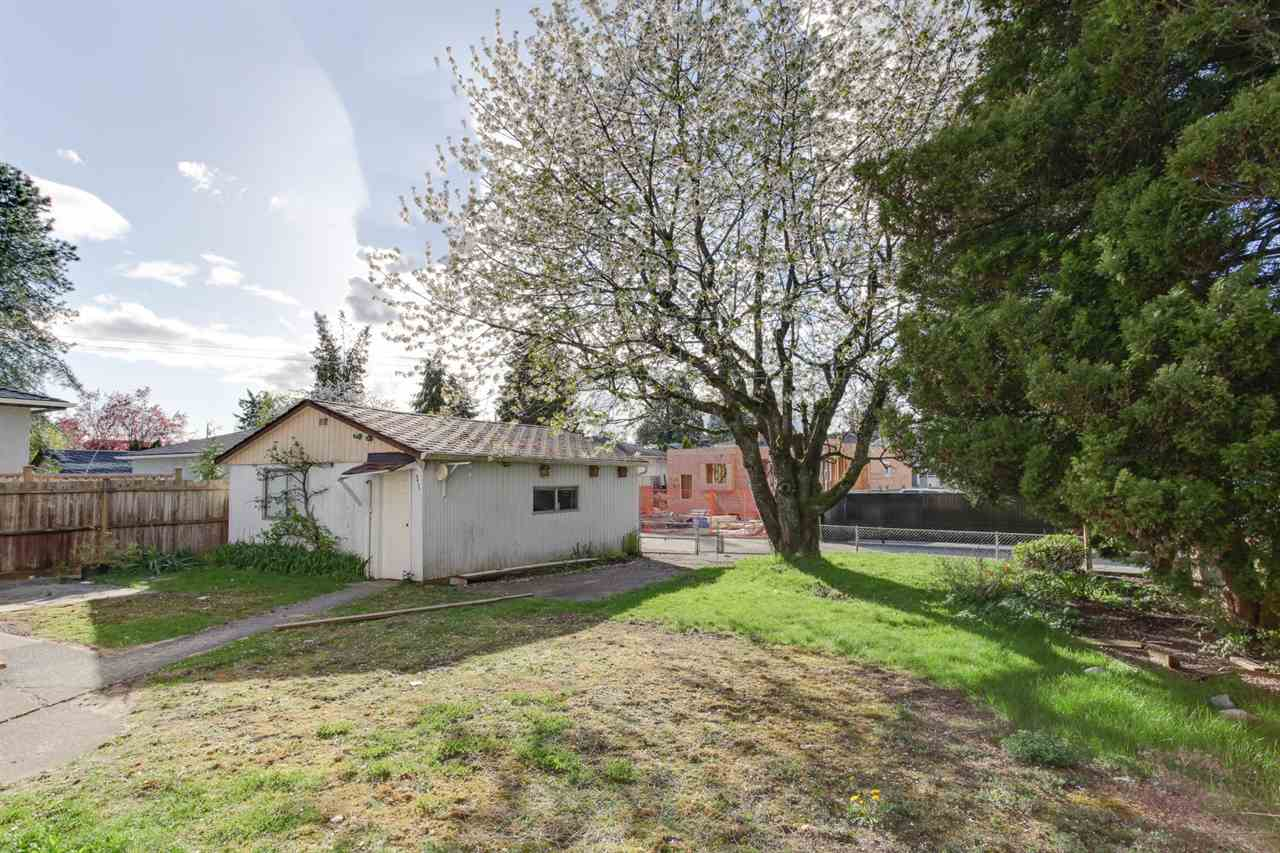 Detached at 8455 14TH AVENUE, Burnaby East, British Columbia. Image 4