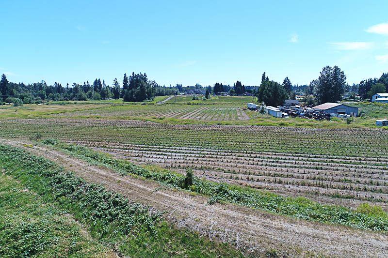 Detached at 20617 102B AVENUE, Langley, British Columbia. Image 14