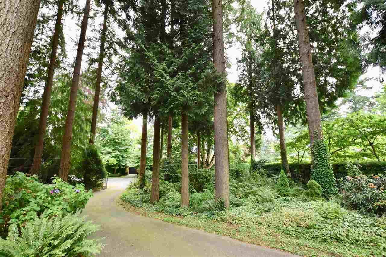 Detached at 4786 DRUMMOND DRIVE, Vancouver West, British Columbia. Image 4
