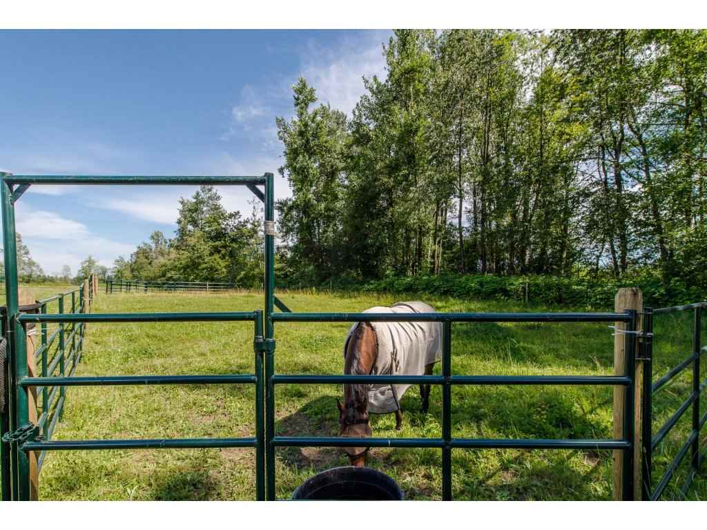 Detached at 4612 BRADNER ROAD, Abbotsford, British Columbia. Image 19