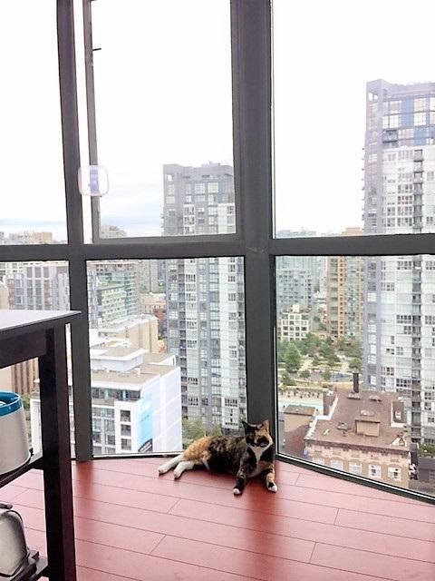 Condo Apartment at 2007 1188 HOWE STREET, Unit 2007, Vancouver West, British Columbia. Image 9