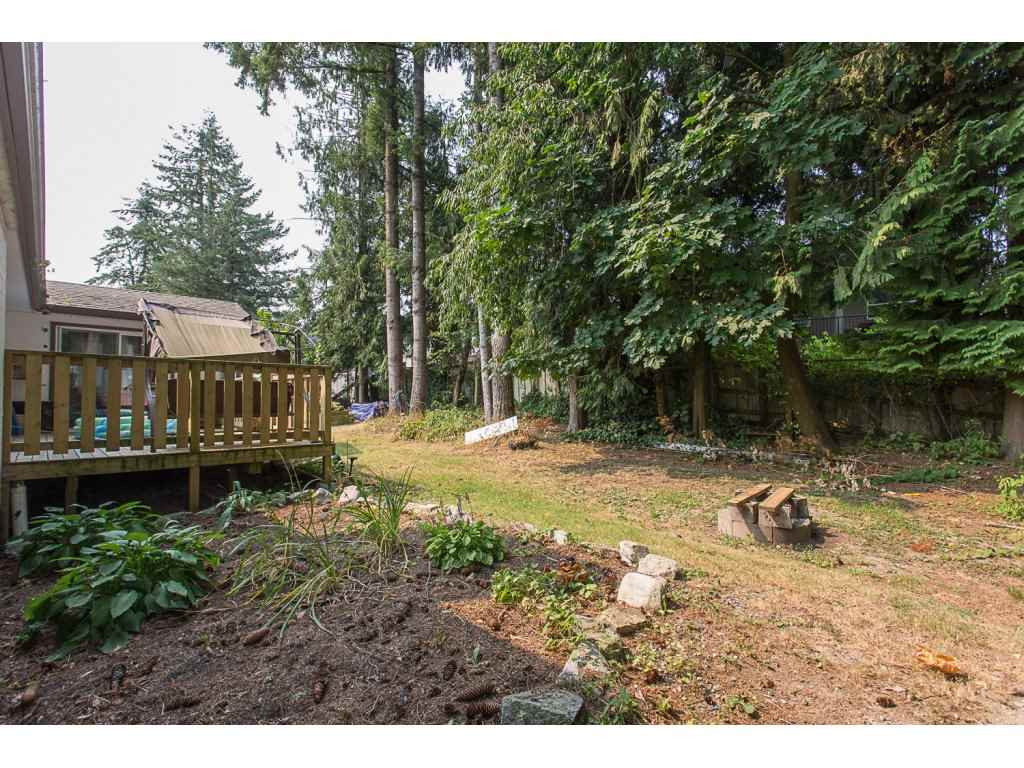 Detached at 3143 LEFEUVRE ROAD, Abbotsford, British Columbia. Image 2