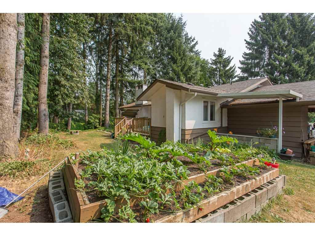 Detached at 3143 LEFEUVRE ROAD, Abbotsford, British Columbia. Image 20