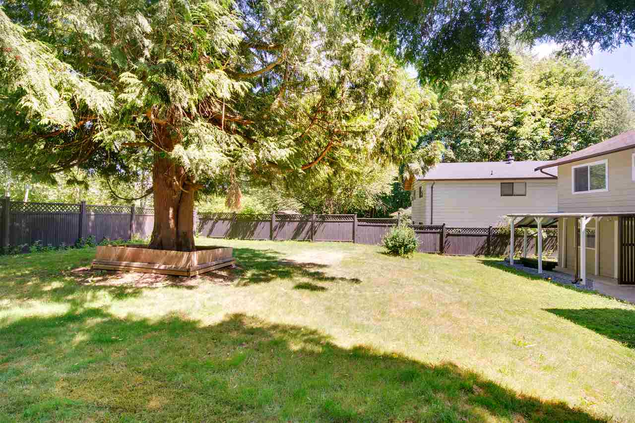 Detached at 8979 QUEEN MARY BOULEVARD, Surrey, British Columbia. Image 18
