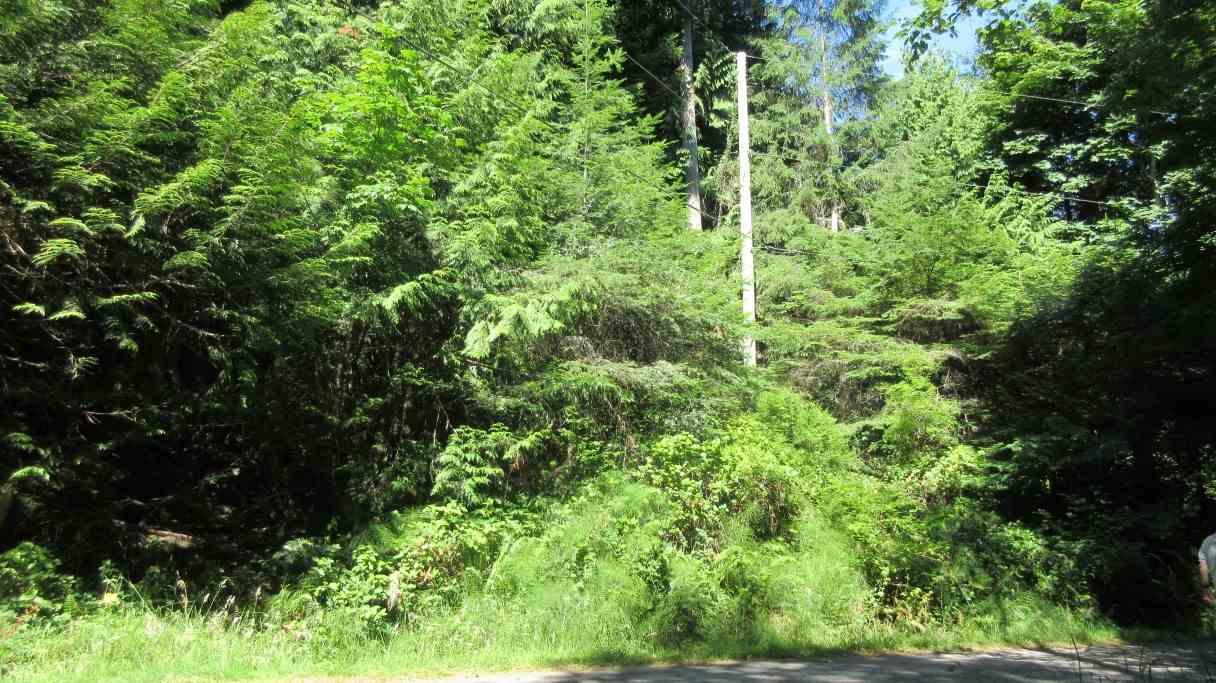 Vacant Land at 5820 WALLACE ROAD, Islands-Van. & Gulf, British Columbia. Image 12