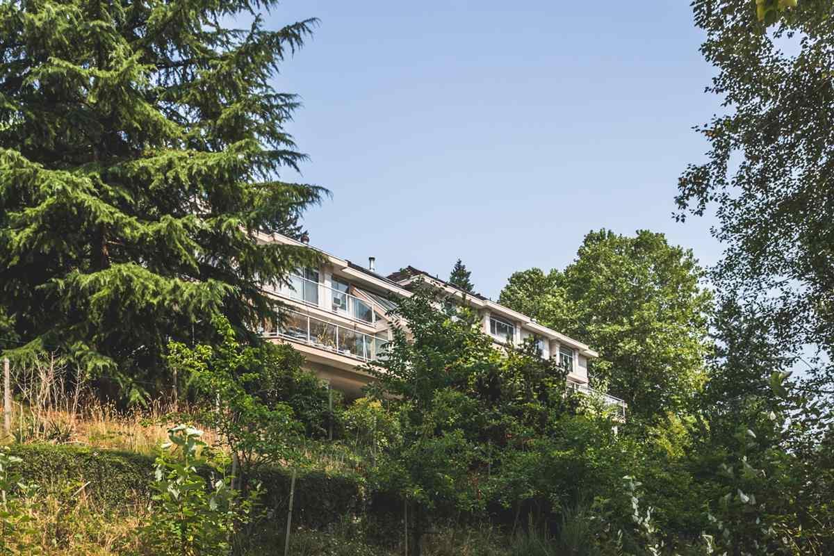 Detached at 13554 55A AVENUE, Surrey, British Columbia. Image 14