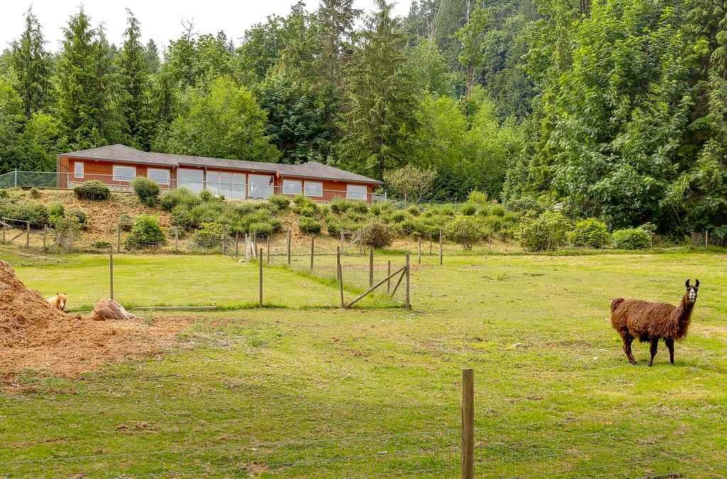 Detached at 26796 CUNNINGHAM AVENUE, Maple Ridge, British Columbia. Image 17