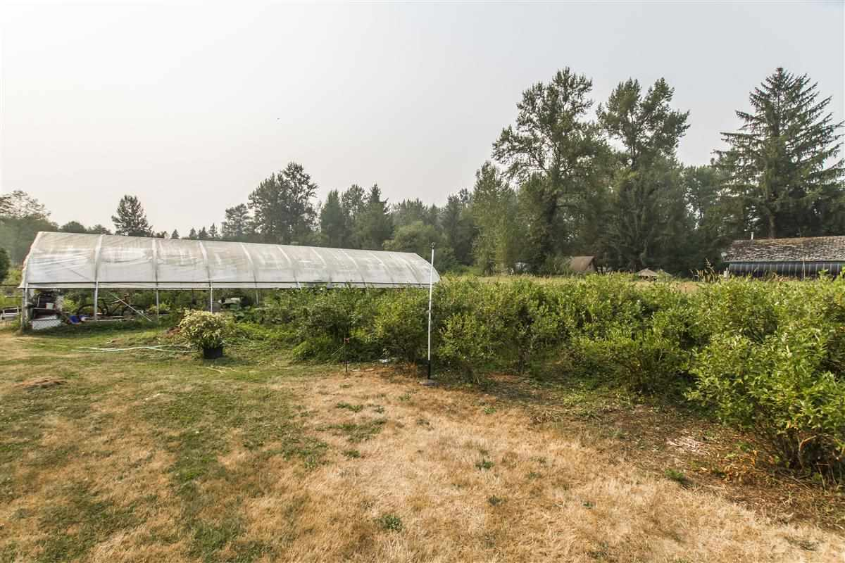 Detached at 13511 224 STREET, Maple Ridge, British Columbia. Image 3