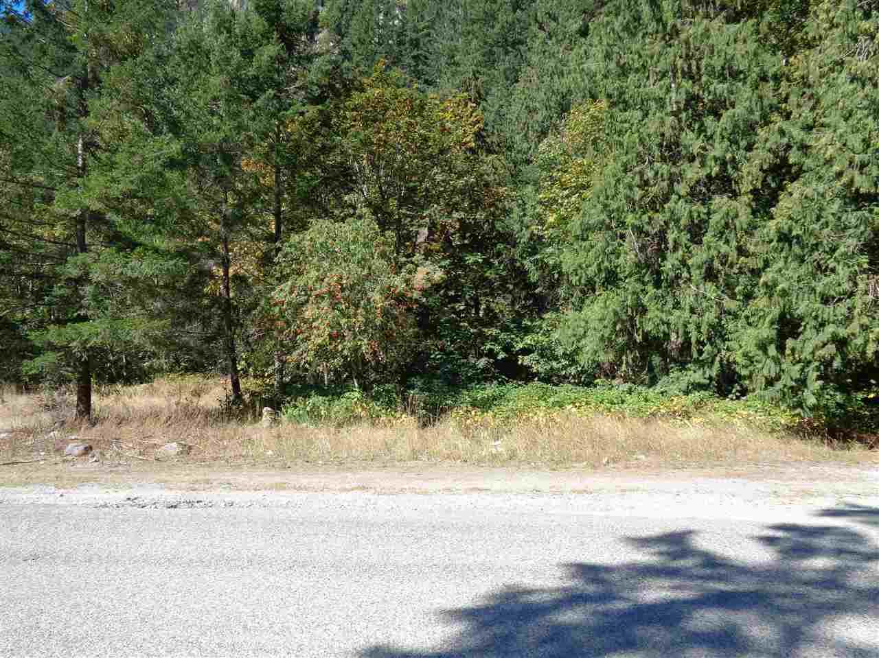Vacant Land at 19841 SILVER SKAGIT ROAD, Hope, British Columbia. Image 3