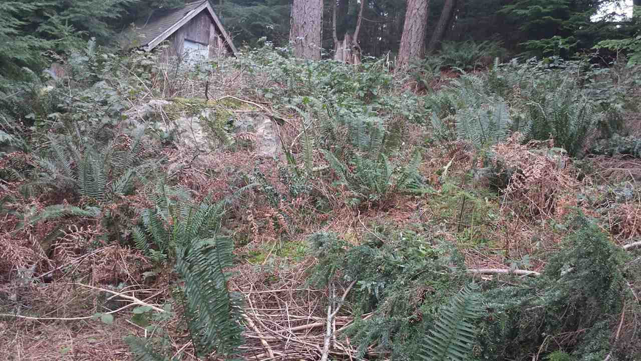 Vacant Land at 1269 ADAMS ROAD, Bowen Island, British Columbia. Image 5
