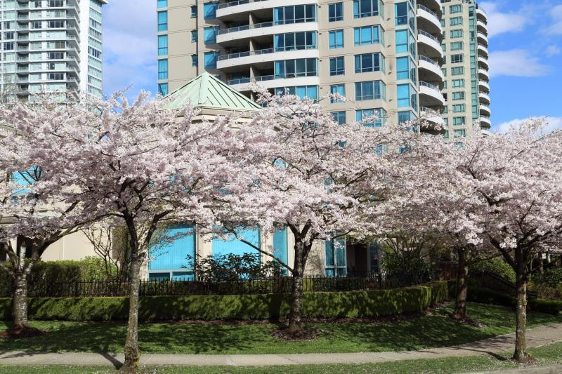 Townhouse at 5 6611 SOUTHOAKS CRESCENT, Unit 5, Burnaby South, British Columbia. Image 20