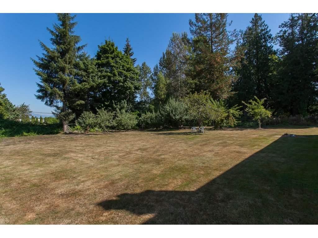 Detached at 8646 216 STREET, Langley, British Columbia. Image 2