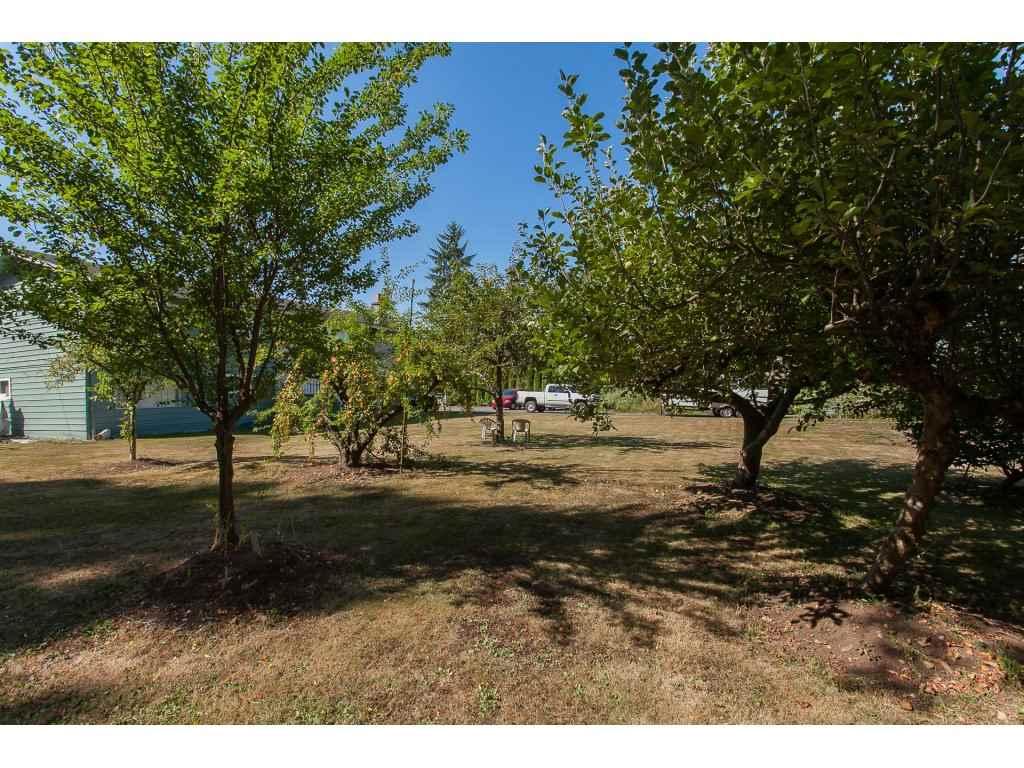 Detached at 8646 216 STREET, Langley, British Columbia. Image 20