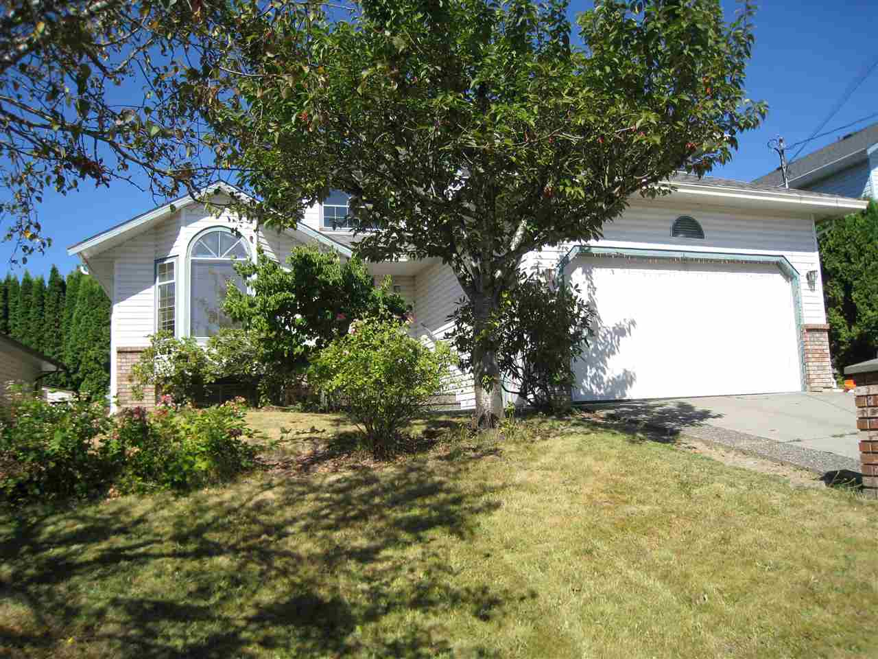 Detached at 3123 TOWNLINE ROAD, Abbotsford, British Columbia. Image 15