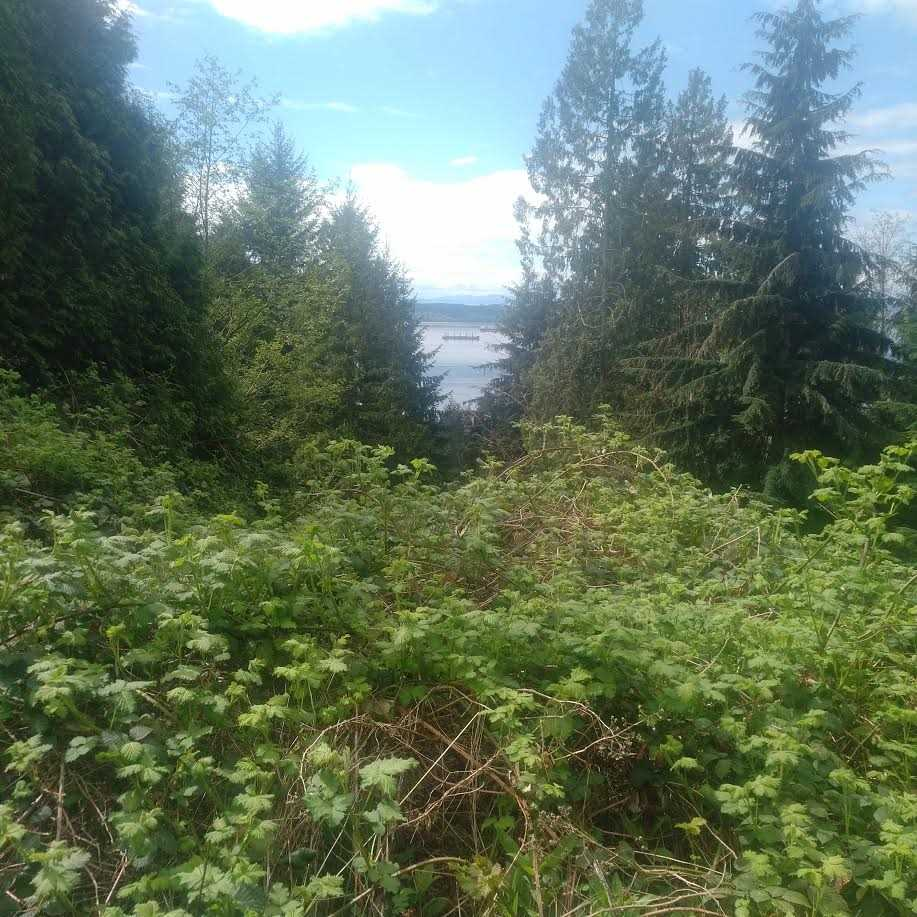 Vacant Land at 2320 CHAIRLIFT CLOSE, West Vancouver, British Columbia. Image 2