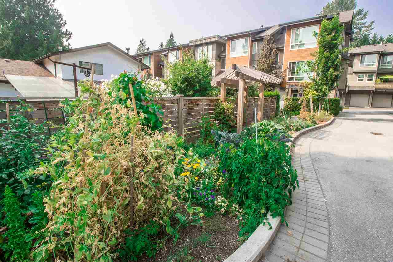 Townhouse at 24 897 PREMIER STREET, Unit 24, North Vancouver, British Columbia. Image 18