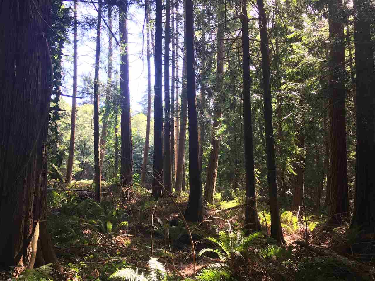 Vacant Land at LOT 3 MARGARET ROAD, Sunshine Coast, British Columbia. Image 2