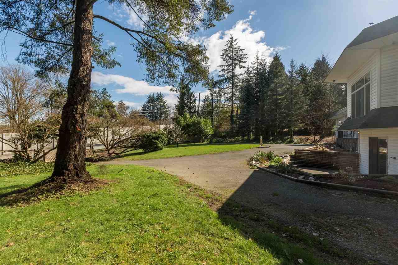 Detached at 10245 176 STREET, North Surrey, British Columbia. Image 3