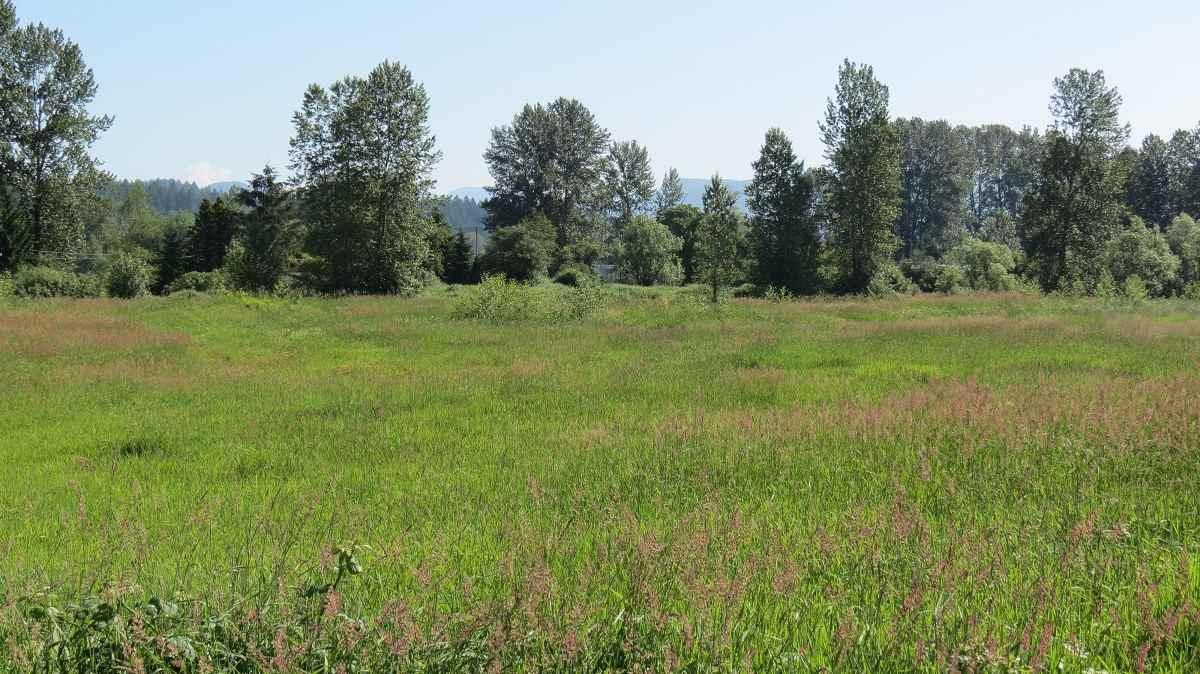 Vacant Land at 27612 RIVER ROAD, Abbotsford, British Columbia. Image 6