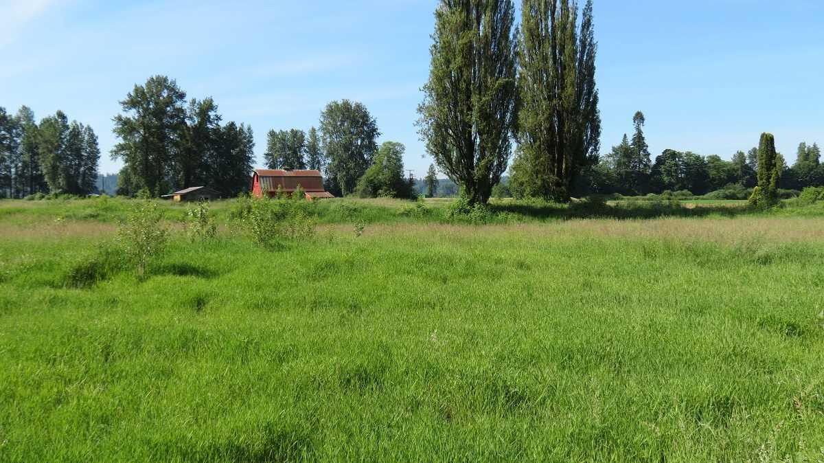 Vacant Land at 27612 RIVER ROAD, Abbotsford, British Columbia. Image 8