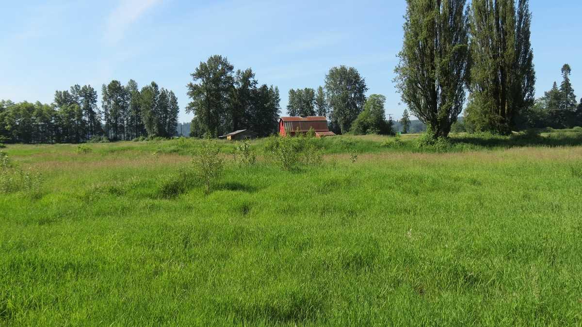 Vacant Land at 27612 RIVER ROAD, Abbotsford, British Columbia. Image 9