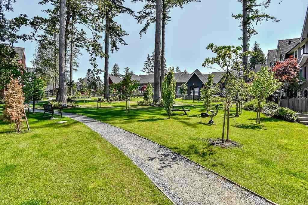 Townhouse at 45 2888 156 STREET, Unit 45, South Surrey White Rock, British Columbia. Image 16