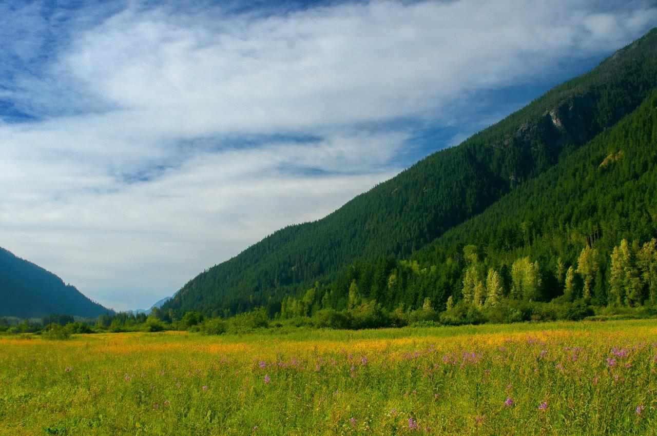 Vacant Land at H25 HUCKLEBERRY TRAIL, Hope, British Columbia. Image 19