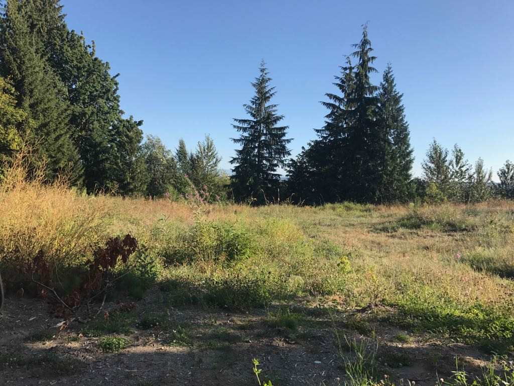Vacant Land at LT.3 BENCH AVENUE, Unit LT.3, Mission, British Columbia. Image 1