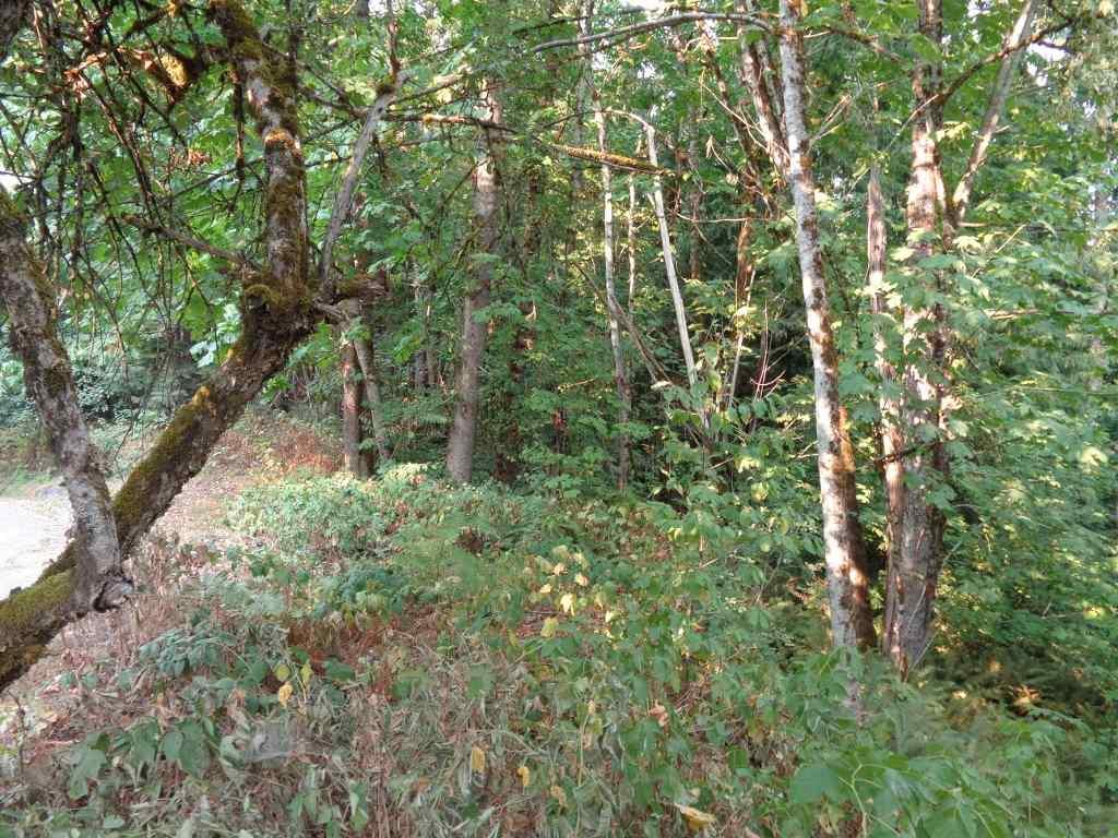Vacant Land at 22784 ROSS ROAD, Hope, British Columbia. Image 3