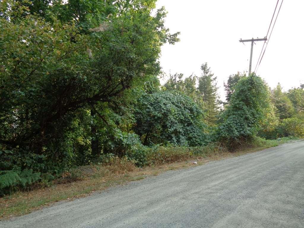 Vacant Land at 22784 ROSS ROAD, Hope, British Columbia. Image 6