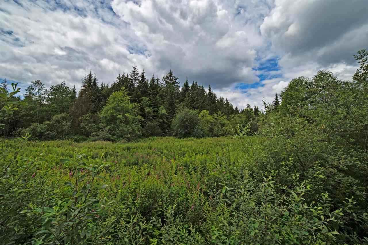 Vacant Land at 8871 DEWDNEY TRUNK ROAD, Mission, British Columbia. Image 1