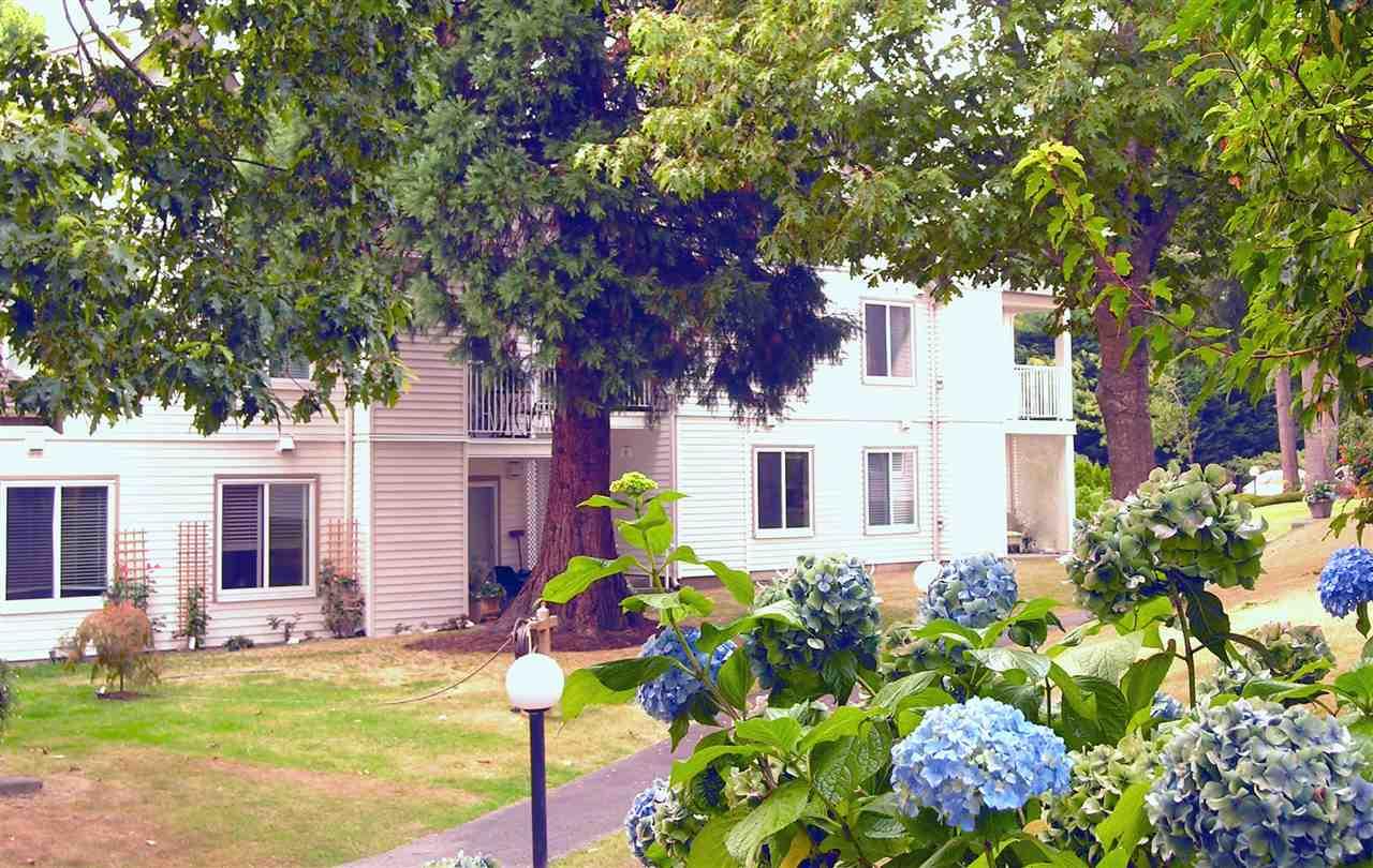 Townhouse at 4 12916 17 AVENUE, Unit 4, South Surrey White Rock, British Columbia. Image 3
