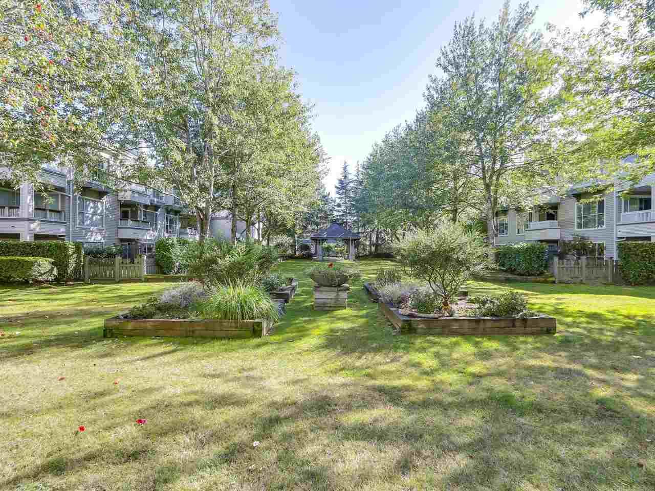 Condo Apartment at 314 8880 JONES ROAD, Unit 314, Richmond, British Columbia. Image 18