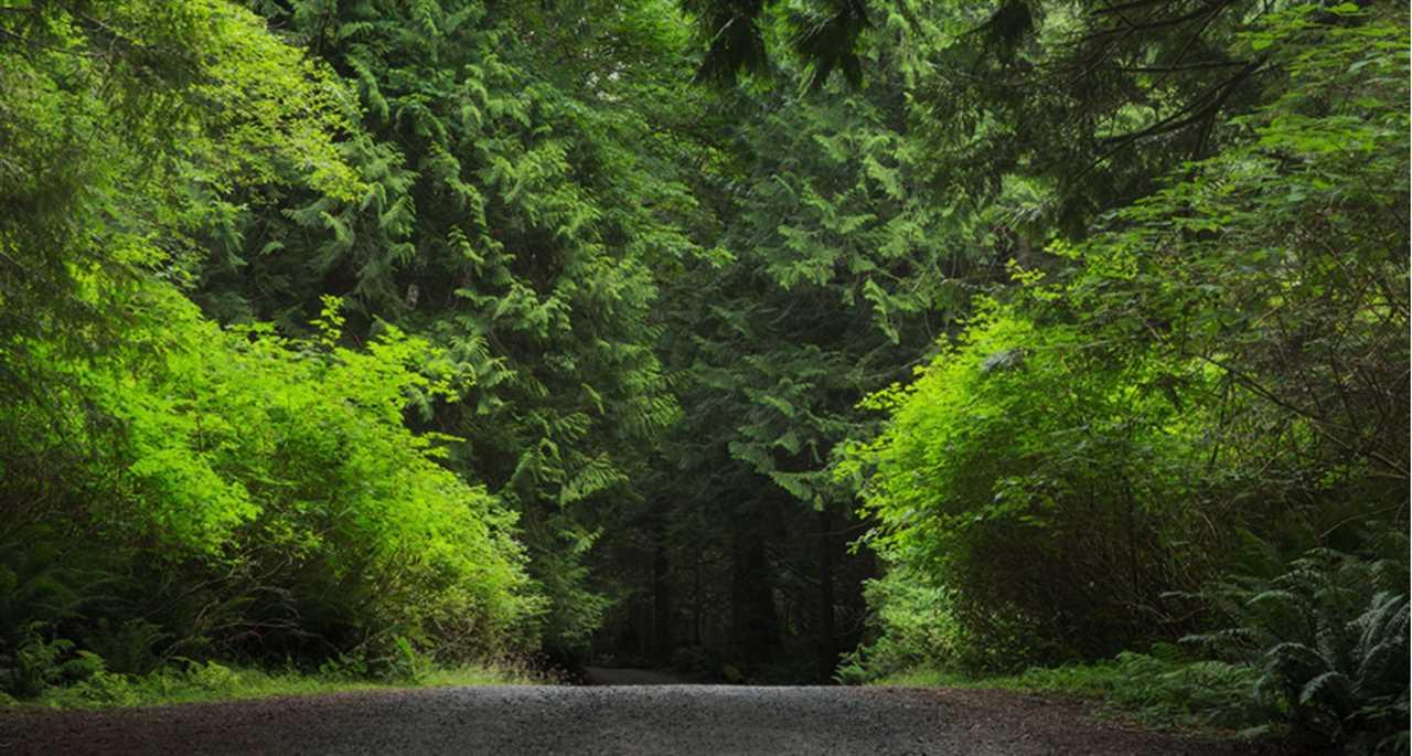 Vacant Land at 1820 CAPE DRIVE, Bowen Island, British Columbia. Image 7