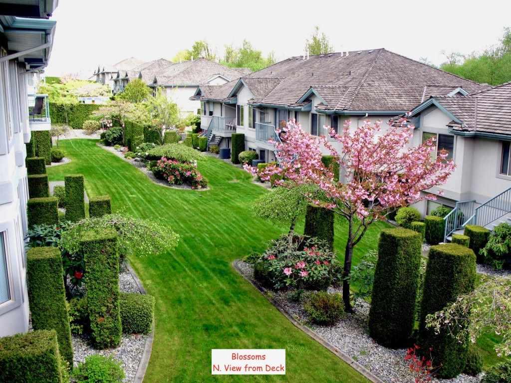 Townhouse at 40 3555 BLUE JAY STREET, Unit 40, Abbotsford, British Columbia. Image 20