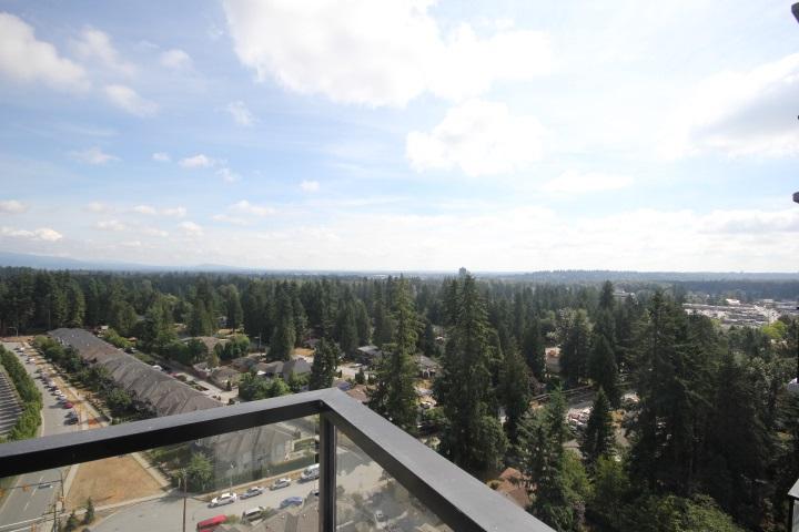 Condo Apartment at 2002 3080 LINCOLN AVENUE, Unit 2002, Coquitlam, British Columbia. Image 16
