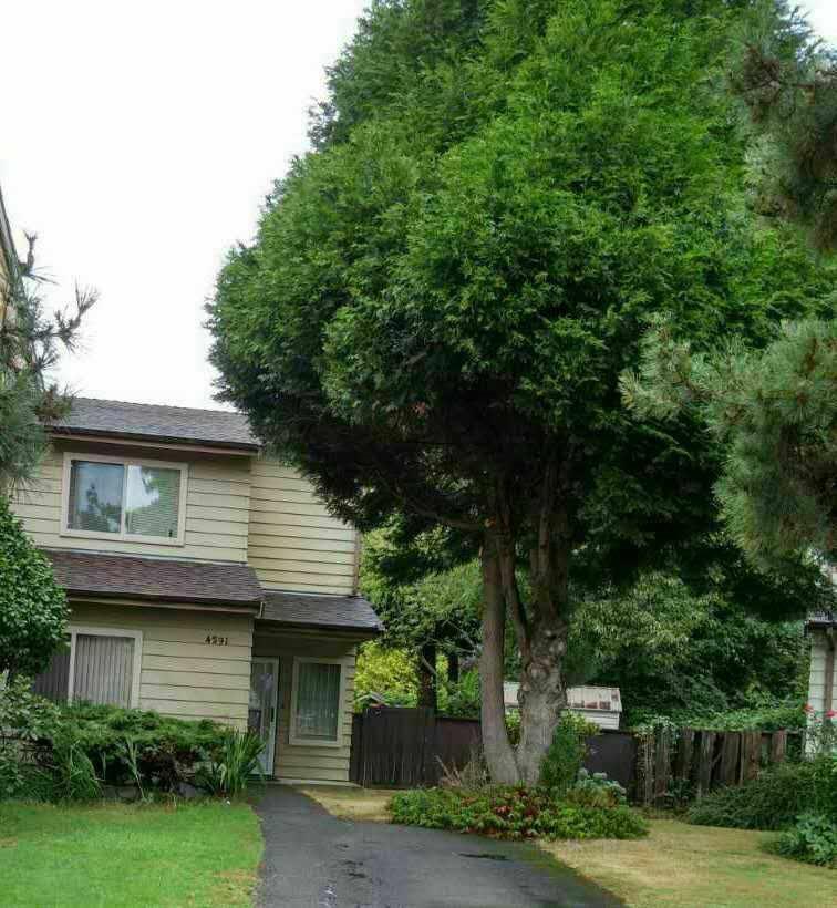 Half-duplex at 4291 CABOT DRIVE, Richmond, British Columbia. Image 1